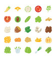 food ingredient icons vector image