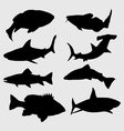 silhouettes fish vector image