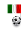 Soccer Balls or Footballs with flag of Italy vector image