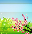 spring bg vector image vector image