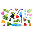 tropical objects set vector image vector image