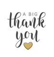 handwritten lettering a big thank you vector image vector image