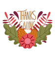 happy thanksgiving day pine cones flowers foliage vector image vector image