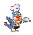 Robin Bird Chef vector image vector image