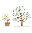 Tree with money Coins and dollars Evolution vector image