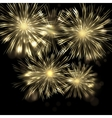 Brightly Colorful Fireworks and Salute vector image