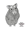 hand drawn hamster black ink sketch animal on vector image