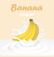 a splash of yogurt from a falling banana and vector image vector image