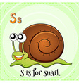 Flashcard letter S is for snail vector image
