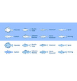Icons of Sea Fish vector image
