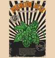 premium beer poster template with beer hop on vector image