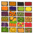 street market pattern background fruits and vector image