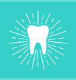 white tooth with sun rays on blue background flat vector image