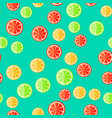 sliced fruit on a minty background vector image