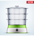 bio electric food steamer vector image vector image