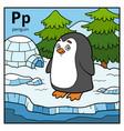 color alphabet for children letter p penguin vector image vector image