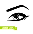 Eye icon 6 vector image vector image