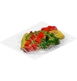 Isometric Pattern vector image vector image
