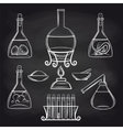 Science lab equipment set on chalkboard vector image vector image