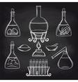 Science lab equipment set on chalkboard vector image