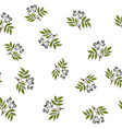 seamless pattern with hand drawn elder branches vector image vector image