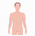 brain on man body silhouette medical vector image vector image