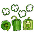 green bell peper set half of sweet paprika and vector image vector image