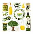 olive symbols set vector image vector image