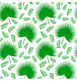 palm leaves on white vector image vector image