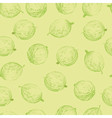 Gooseberries seamless pattern vector image vector image