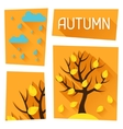 Seasonal with autumn tree in flat vector image