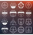 Set Catamaran Logos and Badges vector image