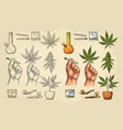 set marijuana cigarettes pipe lighter buds vector image