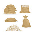 set rice in bags and rice vector image vector image