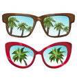 sunglasses reflecting tropical palm vector image vector image