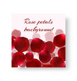 template of a festive background with rose petals vector image