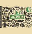 vegetables design elements and symbols vector image vector image