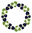 Blackberry Wreath vector image