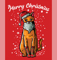 cat with santa hat vector image