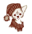 Chihuahua dog vector image
