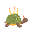 cute cartoon tortoise happy birthday colorful vector image vector image