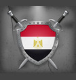 flag egypt shield with national flag two vector image vector image