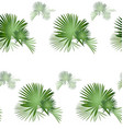 palm tree pattern-01 vector image