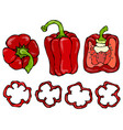 red bell peper set half of sweet paprika and vector image