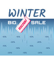sale with melting ice in the form of interest vector image