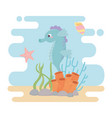 seahorse starfish snail life coral reef cartoon vector image vector image
