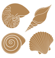Set of graphic sea shells isolated objects vector image vector image