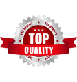 top quality button vector image vector image