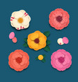 colored camellia flowers with leaves and petals on vector image vector image