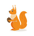 icon of squirrel with cone isolated forest vector image vector image